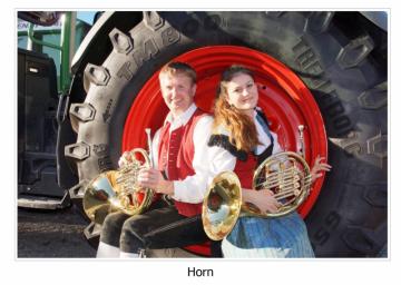 2014-10-29-horn